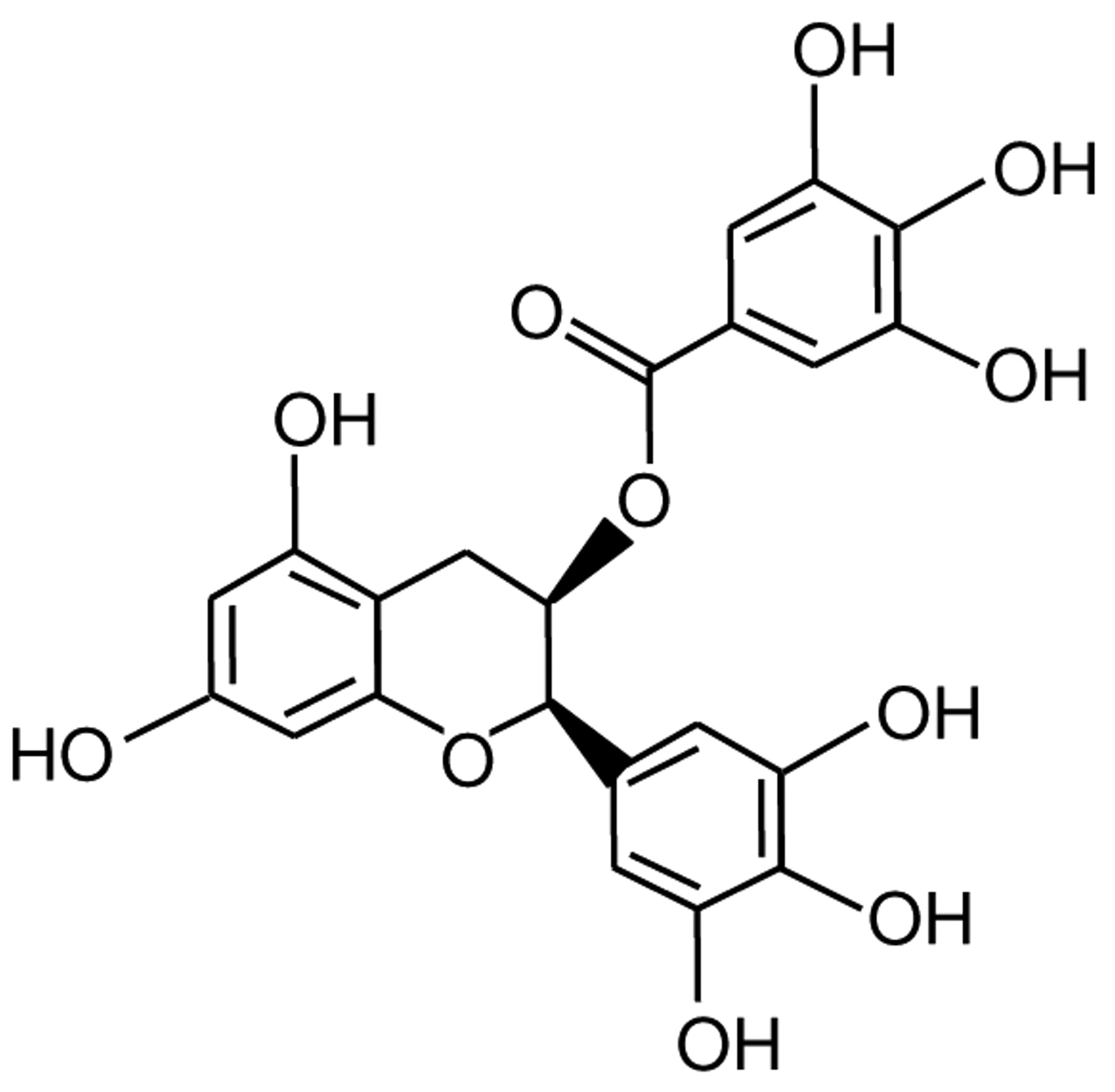 Image result for Epigallocatechin-3-gallate