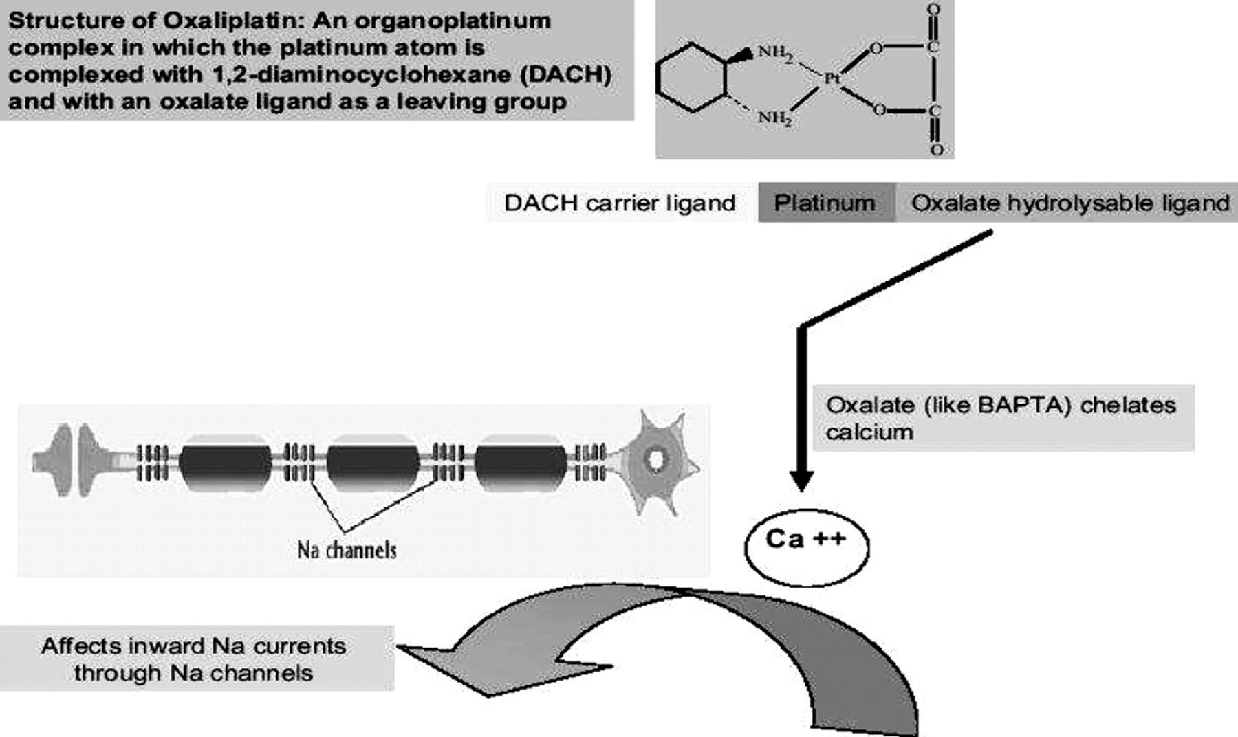 oxaliplatin neuropathy pregabalin for anxiety