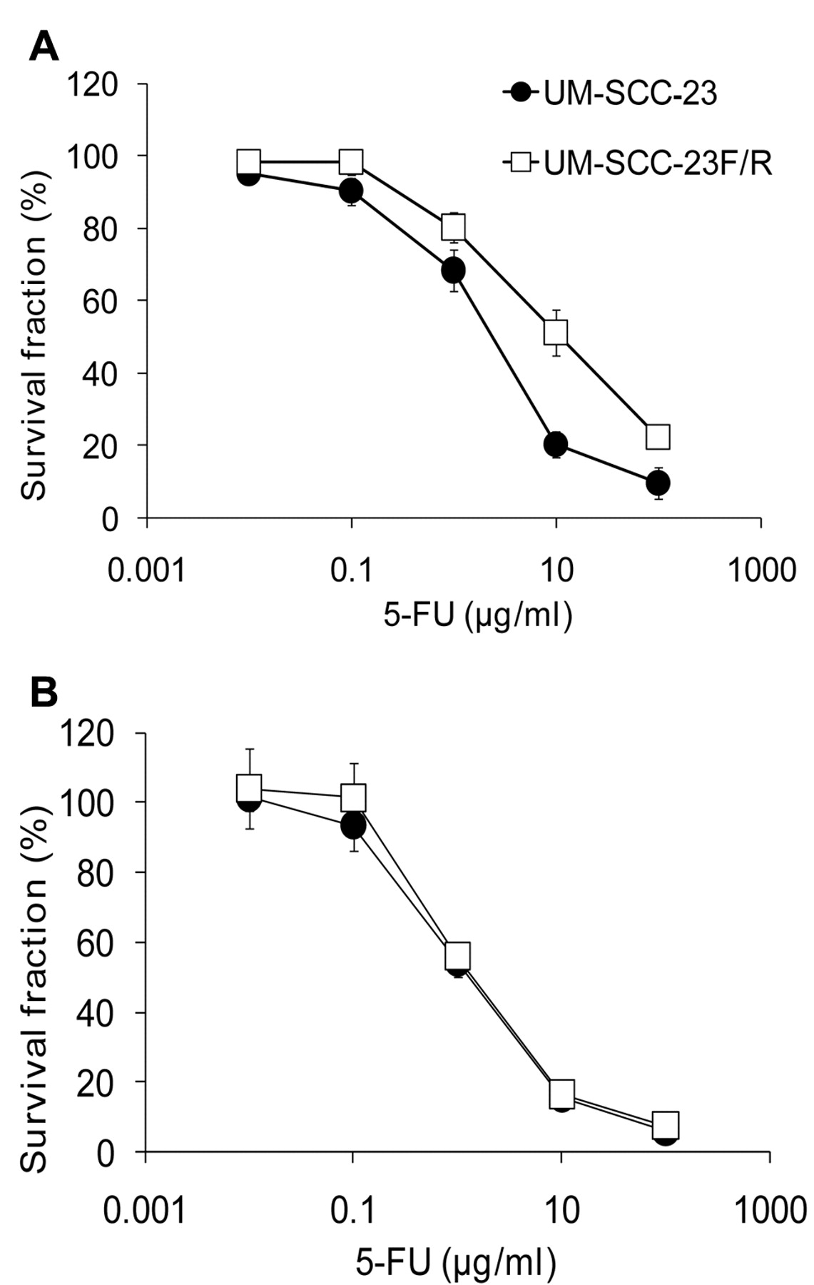 Etodolac Improves 5-FU Sensitivity of Head and Neck Cancer Cells through  Inhibition of Thymidylate Synthase
