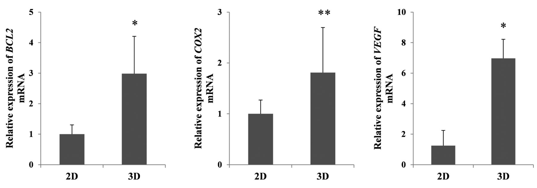 Silicate Fiber Based 3d Cell Culture System For Anticancer Drug Diagram Screening