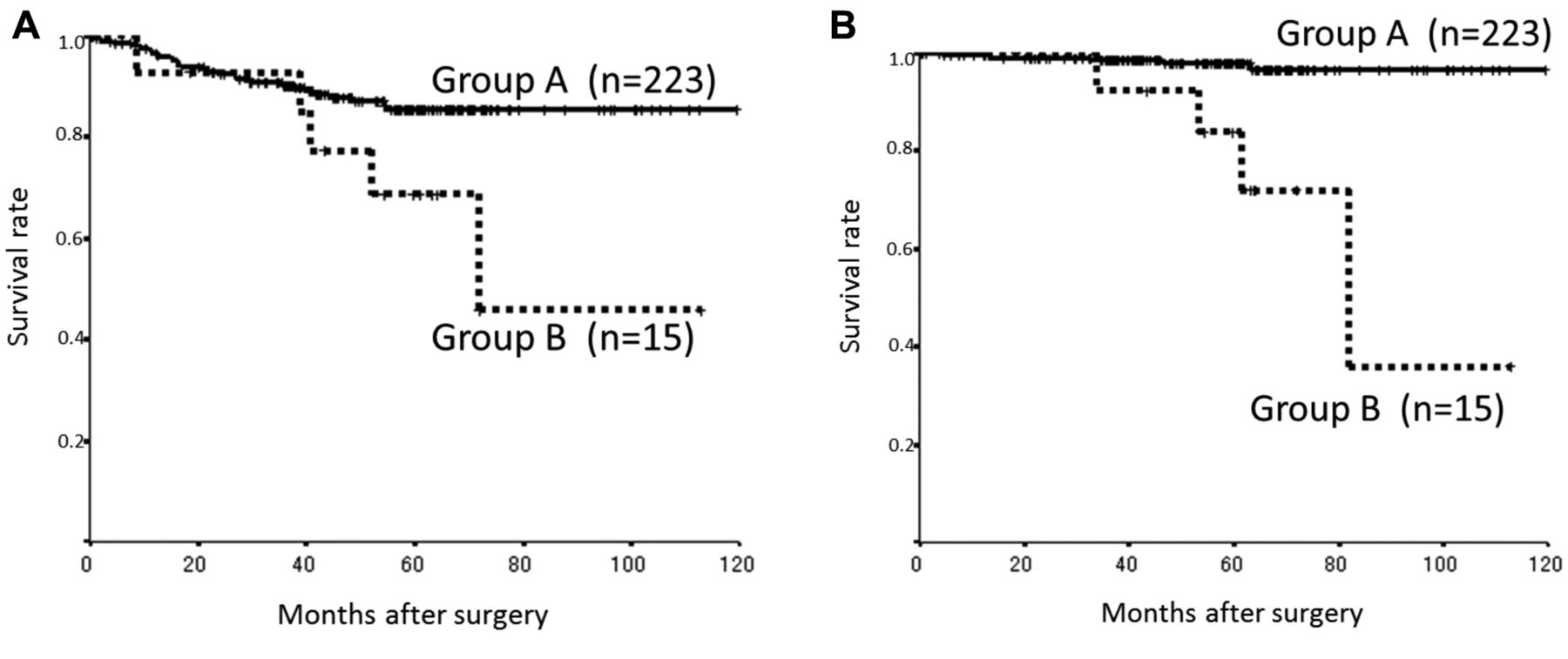 Significance Of Cea And Ca19 9 Combination As A Prognostic Indicator And For Recurrence Monitoring In Patients With Stage Ii Colorectal Cancer