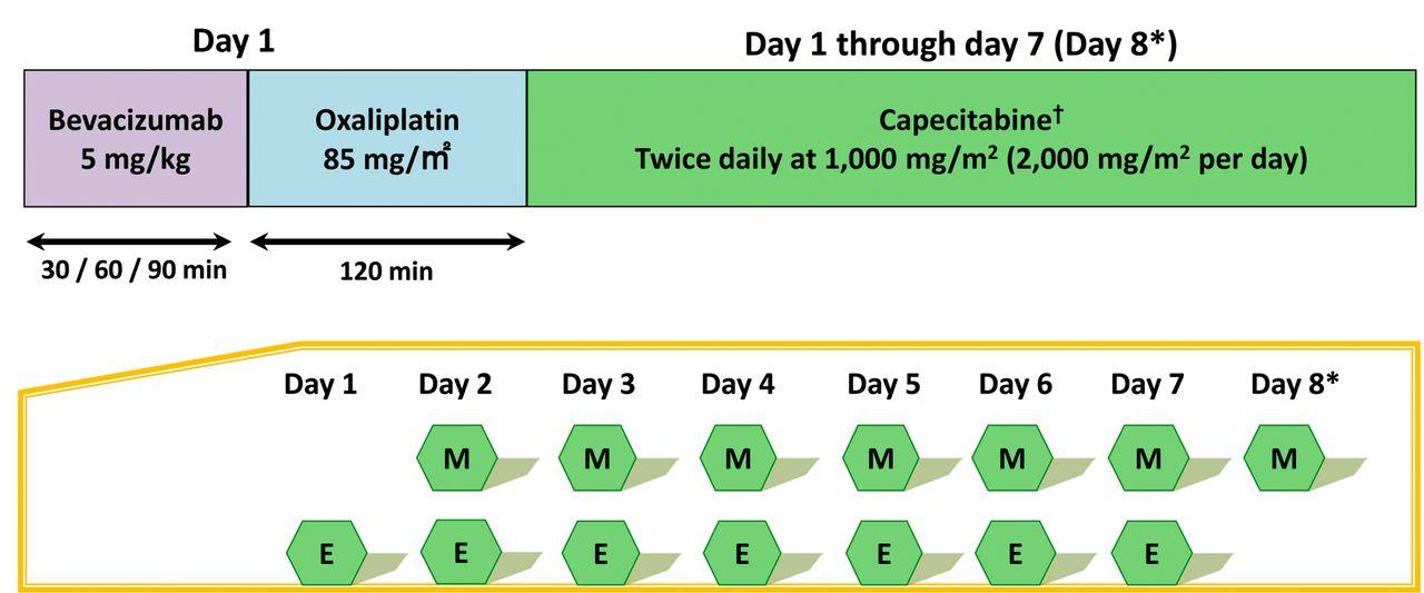 Bi Weekly Capecitabine Oxaliplatin Xelox Plus Bevacizumab As First Line Treatment Of Metastatic Colorectal Cancer The Phoenix Trial
